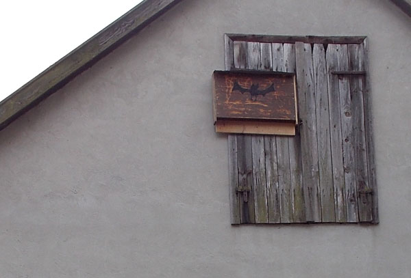 Fledermauswohnungen (4)