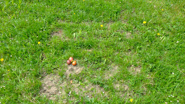17_Polterauer_19.04_Frohe Ostern_kl