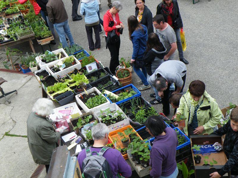 Markttag 2015